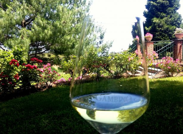 ETNA WINE TOUR & LUNCH