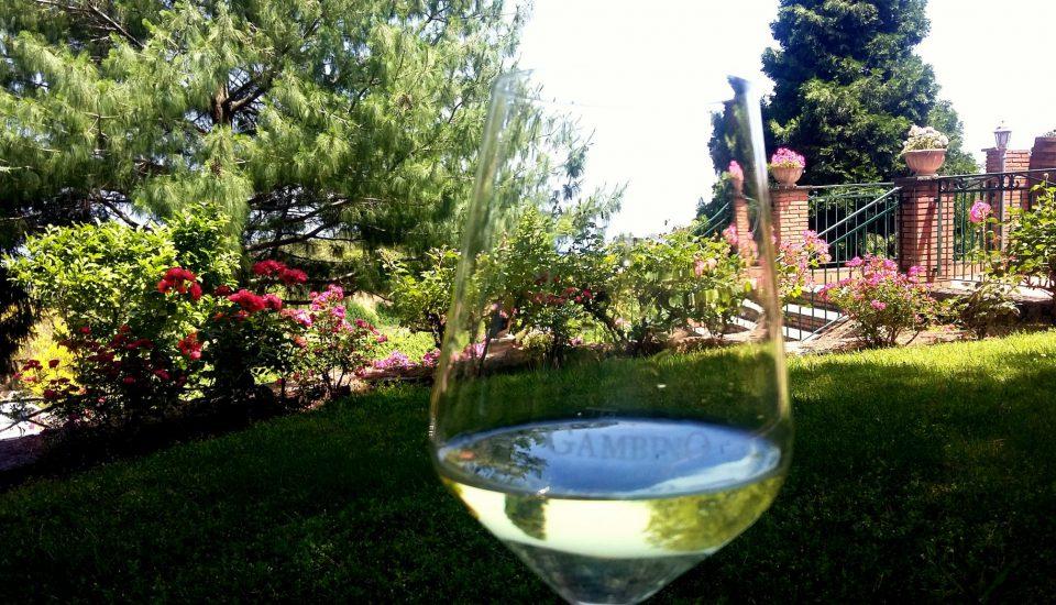 Etna i Lunch z Degustacją Wina